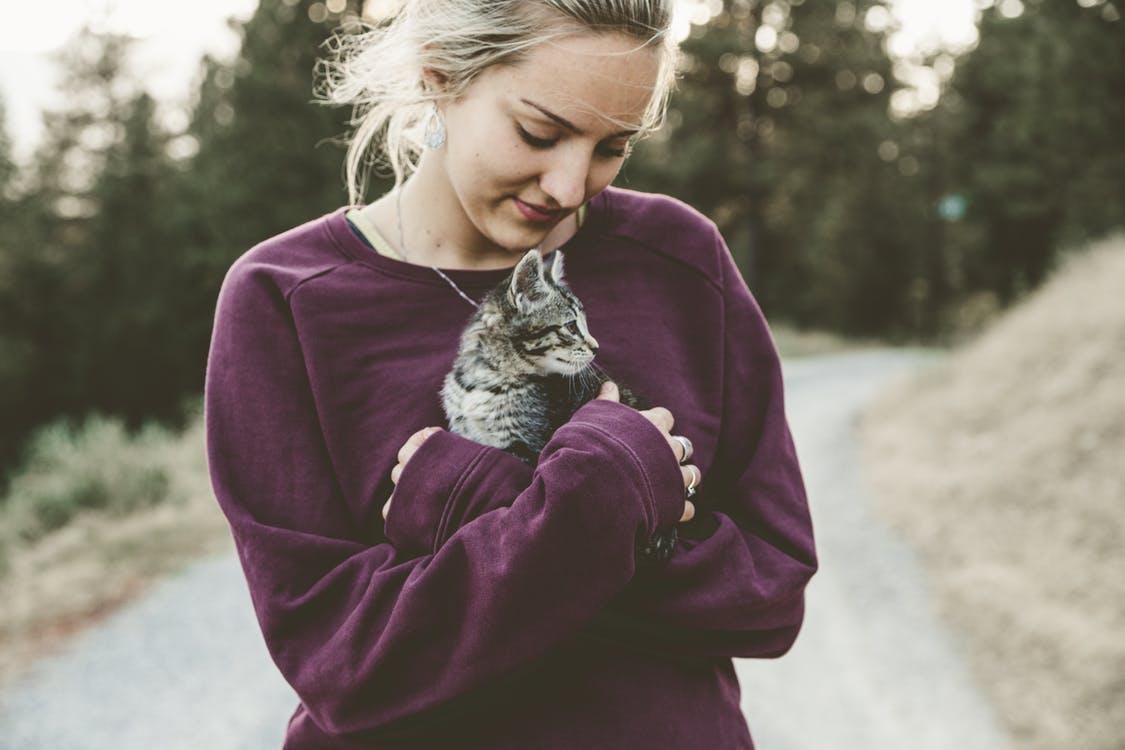 Как выбрать японские кошачьи клички для мальчиков